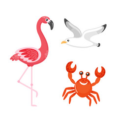 flamingo and crab seagull sea bird characters vector image