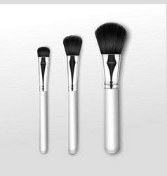 makeup powder large small brush on background vector image
