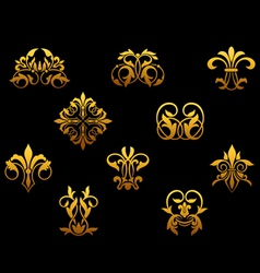 ornate and decorations vector image