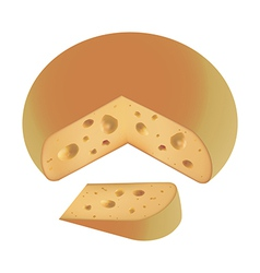 Piece of cheese fresh vector