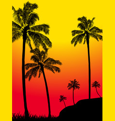 abstract summer tropical palm trees forest vector image