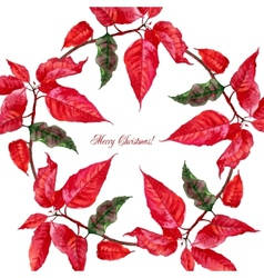 Background with red poinsettia3-07 vector image