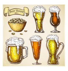 hand drawn beer with snack isolated on grunge vector image