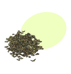 Hand drawn pile heap of dry green tea leaves vector