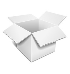 Open white cardboard box vector image