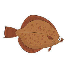 Plaice vector image