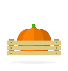 pumpkin in a wooden tray flat isolated vector image