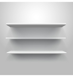 Realistic triple book shelf template vector image