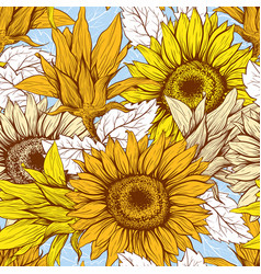 sunflowers field seamless pattern vector image