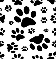 trace of cats vector image