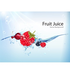 Fruit Juice Background vector image
