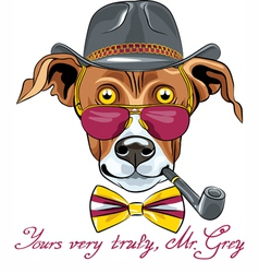 hipster Greyhound Dog vector image