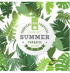tropical summer paradise background vector image vector image