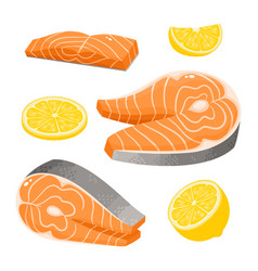 Bright collection seafood isolated on vector