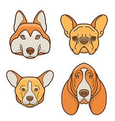 Dog faces of various breeds vector