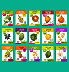 Exotic fruits farm market price cards vector