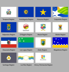 flags of the states of chile vector image