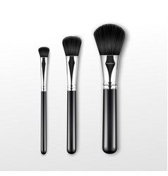 set of clean professional makeup powder brush vector image