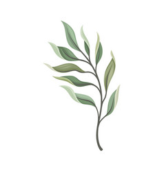 Stem with long leaves on a vector