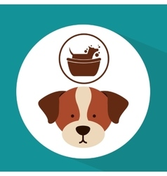 veterinary dog care gromming icon vector image vector image