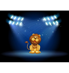 A stage with a lion at the center vector image vector image