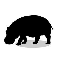 hippo mammal black silhouette animal vector image