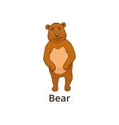 Forest animal bear cartoon for children vector image
