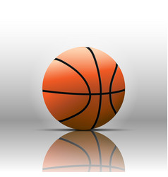 basketball isolate on white background vector image
