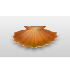 Empty shell vector