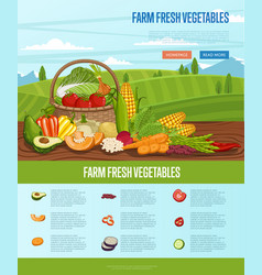 Farm fresh vegetable banner with rural landscape vector