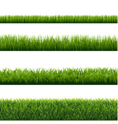 Green grass borders set isolated background vector