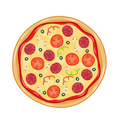italian pizza with tomato sausage vector image