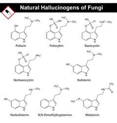 Natural tryptamine hallucinogens vector