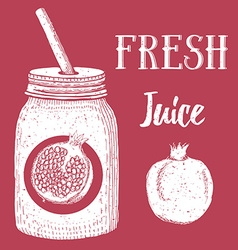 Pomegranate fresh juice vector image
