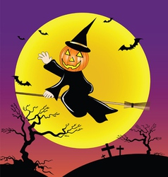 pumpkin head ride the broom vector image