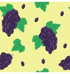 Seamless Pattern with Black Grapes on Light Green vector image