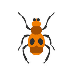 Spotted bug icon flat style vector
