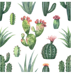 Watercolor seamless pattern of cacti and vector