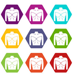 Female breast in a bra icon set color hexahedron vector