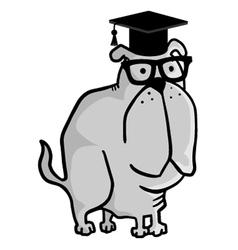 teacher dog vector image