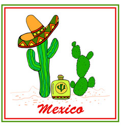 Funny cactuses in sombrero with tequila colorful vector