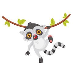 funny lemur hanging on liana animal with long vector image