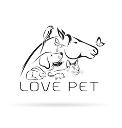 group of pets - horse dog cat bird butterfly vector image