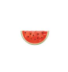 Isolated watermelon slice vector