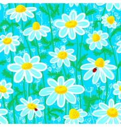Ladybirds and camomile vector