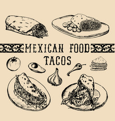 mexican food menu in burritos nachos vector image