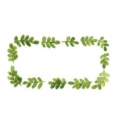 green fern leaves rectangle wreath watercolor vector image