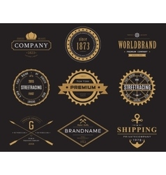 Retro banners and labels for company logotype vector image