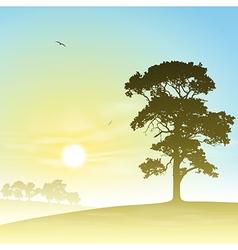 Meadow Landscape vector image