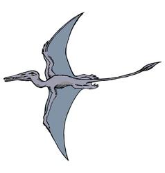 pterodactyl vector image